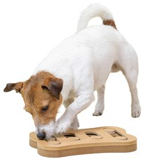 Dog sniffing training with smart toy isolated on white background