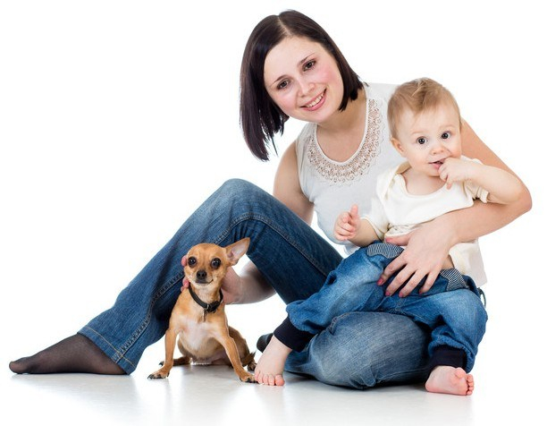 And Baby Makes Four: Preparing for a successful life with dog and baby – the First Trimester